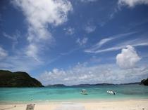 渡嘉敷島(慶良間諸島) 車で10分の泊港(とまりこう)から日帰りツアーが出ています。