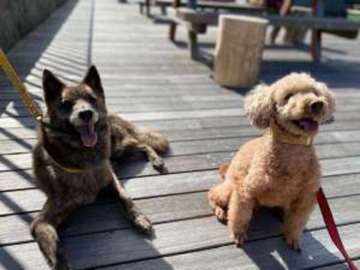 【愛犬と一緒に泊まれるお部屋】大切な家族とのびのび散歩してお泊まりプラン