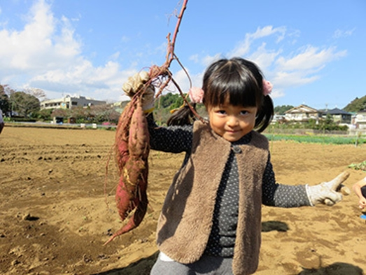 奥多摩の山々を望み大自然の恵を採って食べてたっぷり堪能♪【農業&新鮮野菜収穫体験!!】