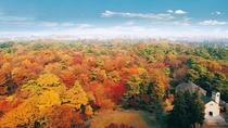 **【庭園・秋(一例)】紅葉した昭和の森は、客室からも眺められる絶景です