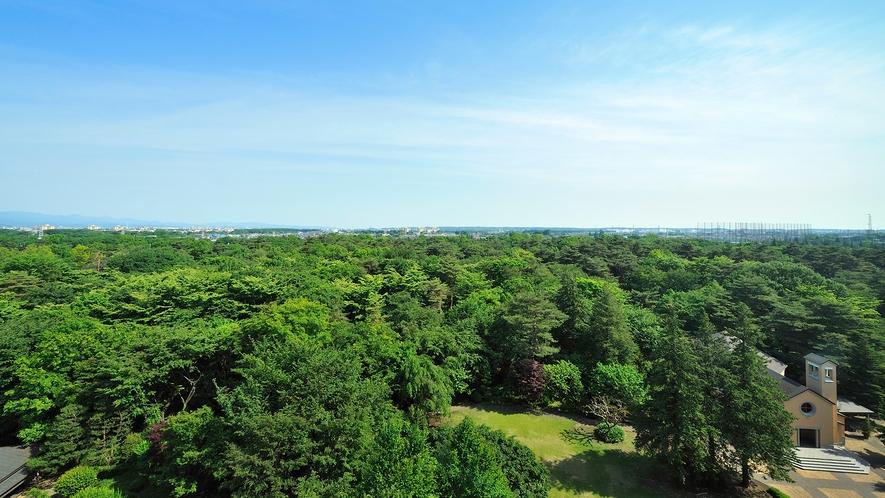 **【庭園(一例)】当館を囲むように広がる昭和の森