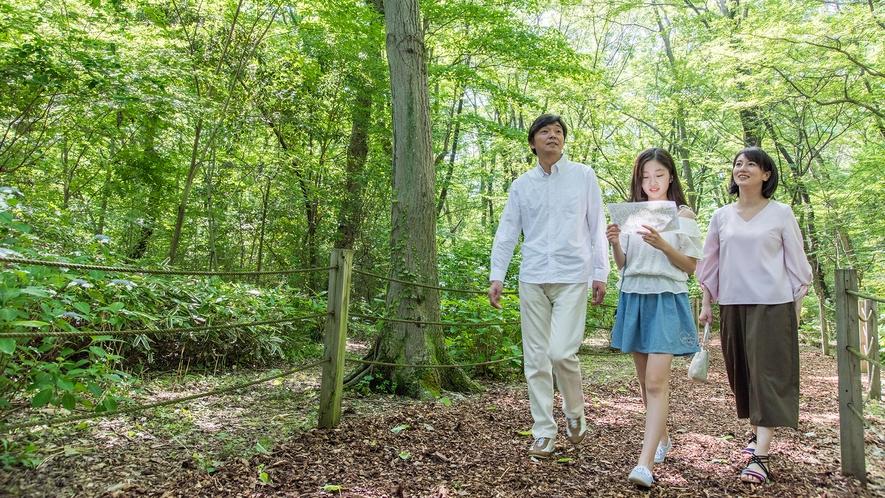 **【庭園(一例)】みんなで森の中を探検!
