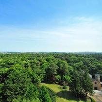 *【庭園(一例)】当館を囲むように広がる昭和の森