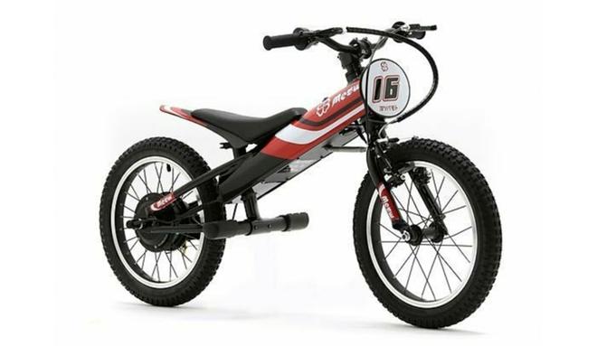 【期間限定】免許不要!お子様と一緒に電動バイク体験◇家族で楽しむ贅沢グランピング