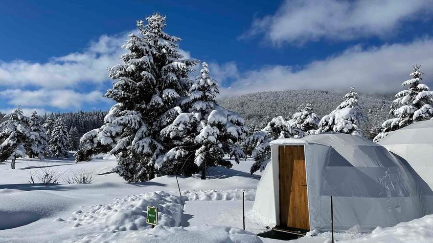暖房完備なので真冬のグランピングも安心