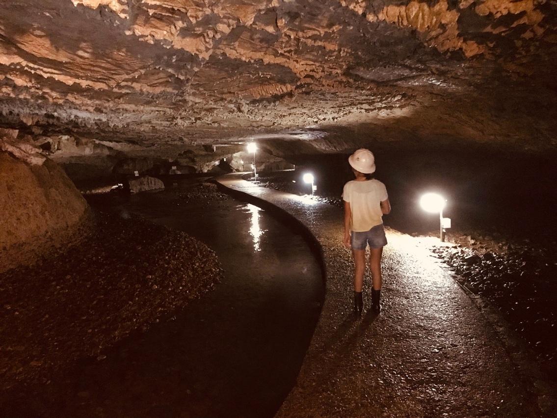 景清洞 探検コース