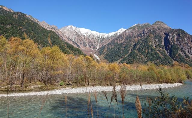 自然の恵み「信州山ごはん」でほっこりと。【スタンダードプラン】