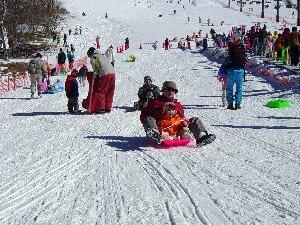スキーが出来なくてもソリで