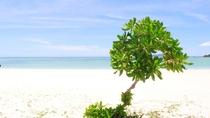 【コンドイビーチ】青い空と青いビーチで石垣を満喫!
