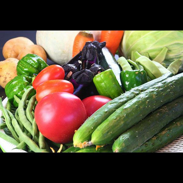 食材◆季節によって様々な旬の食材をご用意いたします。