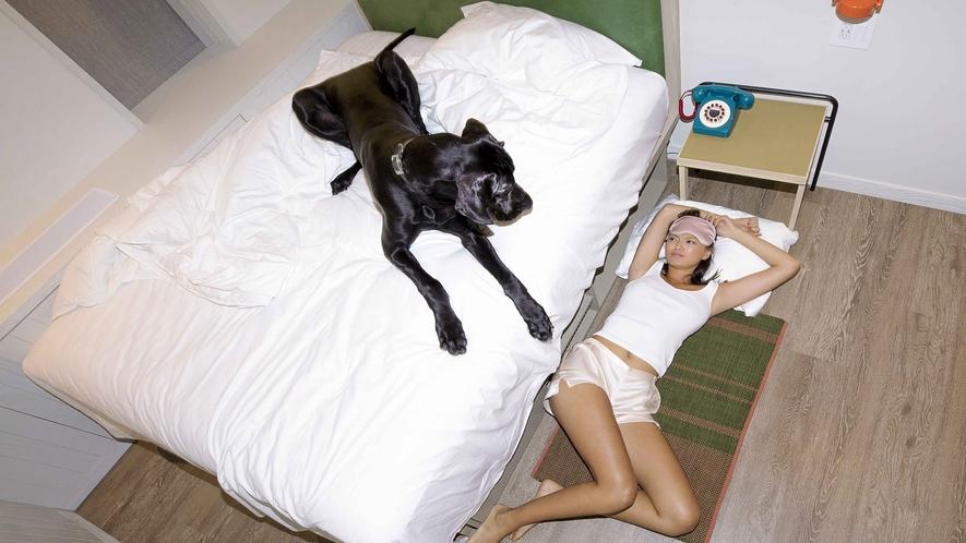 Dog Lovers Plan image 1
