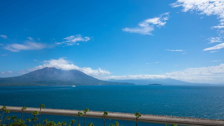 錦江湾を臨む雄大な桜島
