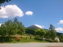 レンゲツツジの季節と蓼科山
