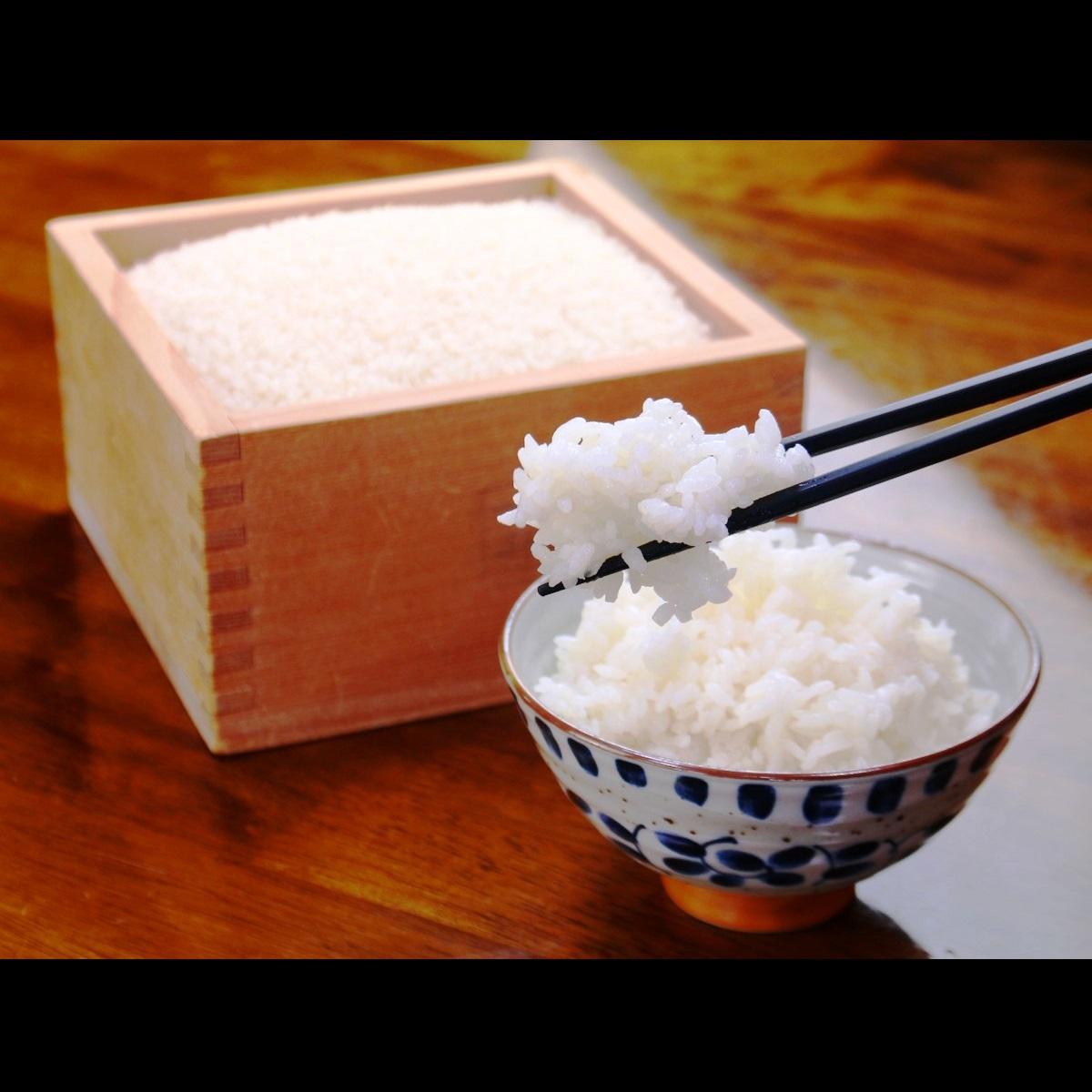 料理◆山の冷たい湧き水で育てた自家製コシヒカリは甘みが増し、お米本来の美味しさを味わえます