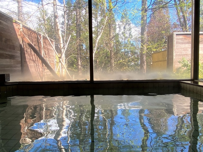 男女別大浴場からの眺め