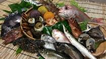 新鮮な宇和海の魚