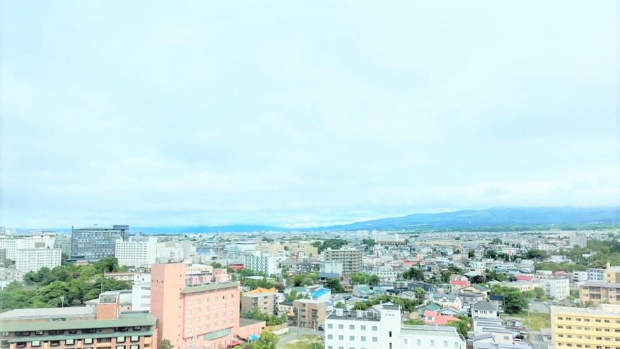 窓からの眺望/スタンダードダブル【禁煙・15平米】