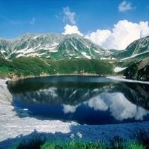 美しい景色に魅了されるみくりが池