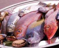 魚は地元駿河湾、相模湾の物を中心に