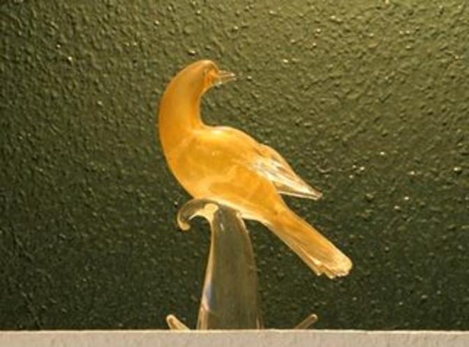 アルシオンは鳥の名前です