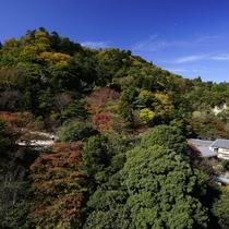 最上階ロイヤルスイート◆「天空の露天風呂」からの景色。四季折々の絶景をお楽しみいただけます。