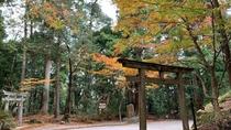紅葉の熊野古道 発心門王子