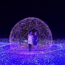 光の楽園「イルミナスオーシャン」