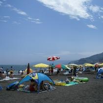 ■吉浜海岸■ 海水浴 7月中旬~8月下旬