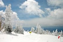 ☆冬風景/根子岳樹氷_300