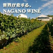 ワイナリー/プラン/長野ワイン_375