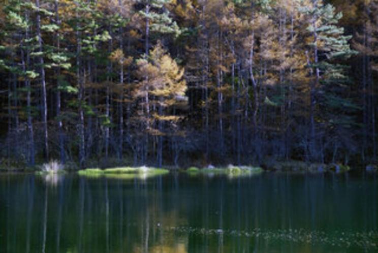 秋の御射鹿池01