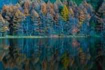 秋の御射鹿池_FDSC03004_DP01