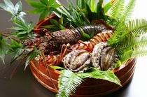 天草海鮮食材(伊勢、あわび、車えび)