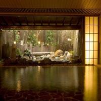 【デイユース☆お食事なし】チェックイン14時☆最大5時間ステイ☆日本三大古泉を満喫♪