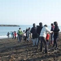 【観光地引網】/鵜の浜の名物である、観光地引網。※時期などはお問い合わせください