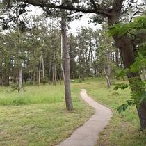 【遊歩道】/ご夕食の前のお散歩、ご朝食前の軽い運動にご利用ください