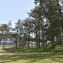 広大な松林と鵜の浜ニューホテル