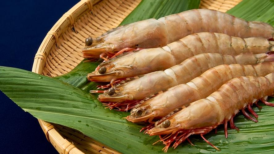 【足赤海老料理】和歌の浦ならではの地元食材