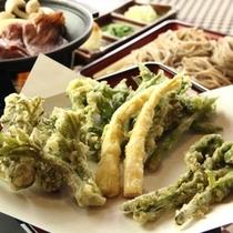 和食夕食♪旬の山菜の天ぷら