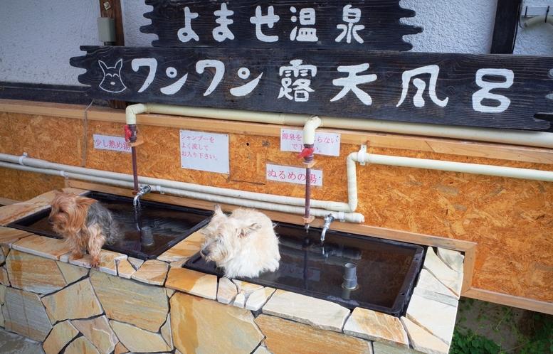 【ワンワン露天風呂】わんちやんも温泉でゆっくり☆