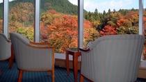紅葉を望む秋のラウンジ