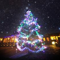 ガーデンに輝くクリスマスツリー