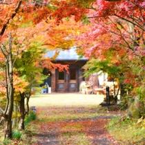 紅葉に包まれる秋のアトリエ