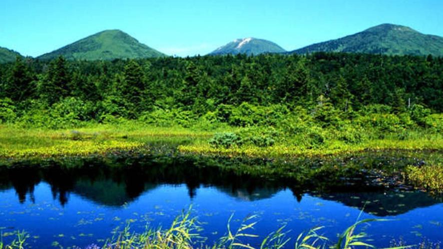 夏の八甲田山