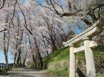 【南陽市・観光情報】赤湯観音鳥居前より(当館から徒歩5分)