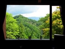 喫茶からの風景