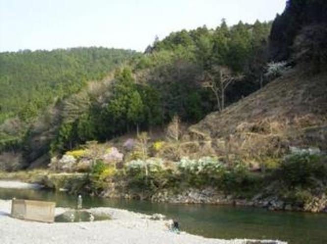 ペンション前の温泉の湧きだす大塔川
