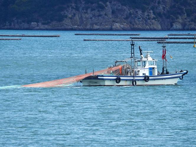 底曳網漁船で漁師体験!