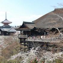 【周辺情報】清水寺まで当館から徒歩15分
