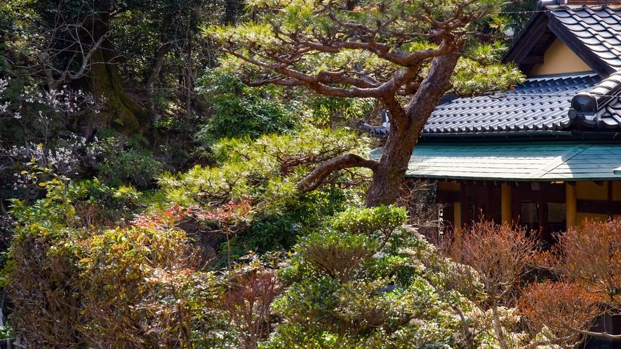 【*外観】山の中に佇む小さな和風旅館